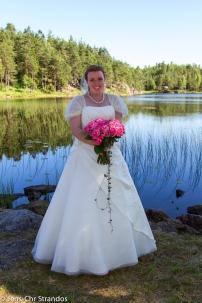 Bruden ved Ormetjern