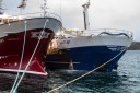 Bilder fra havna i Bodø