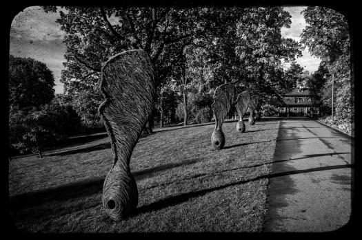 20140514-IMG_0306-Edit