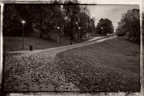Jeg går til jobben gjennom Tøyenparken